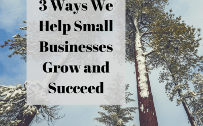 3 Ways We Help Small Businesses Grow and Succeed